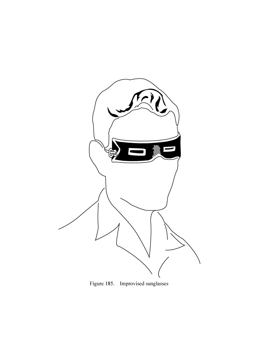 Survival: Figure 185, Improvised Sunglasses
